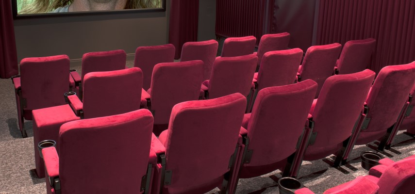 View from rear in small cinema room with fully upholstered fixed seating